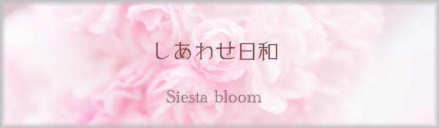 blog ロゴ.jpg